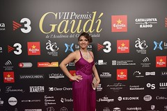 Catifa vermella VII Premis Gaudí (29)