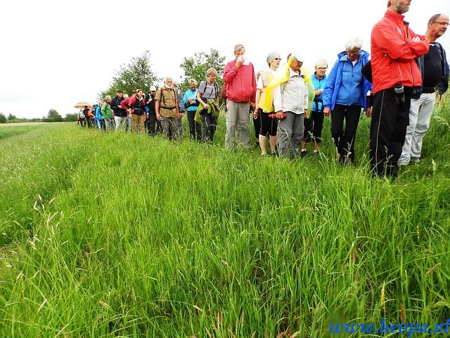 2016-05-25        s'Graveland       25 Km (70)