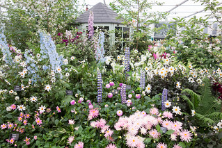 Chelsea Flower Show | by Kent Wang
