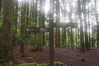 Kumano Kodo Trail | by Mirka23