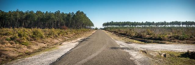 Road - Landes (40) - France