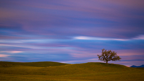 california longexposure sky foothills tree clouds canon landscape dawn 7d scottroad loneoak 55250mm 258b