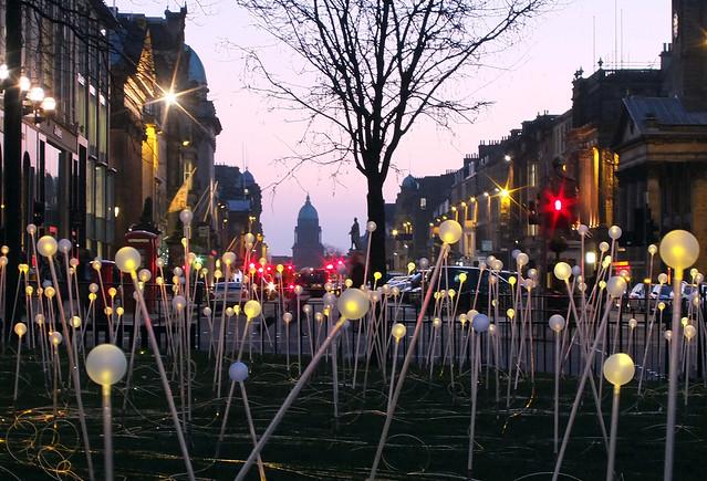 Edinburgh: Field of Light