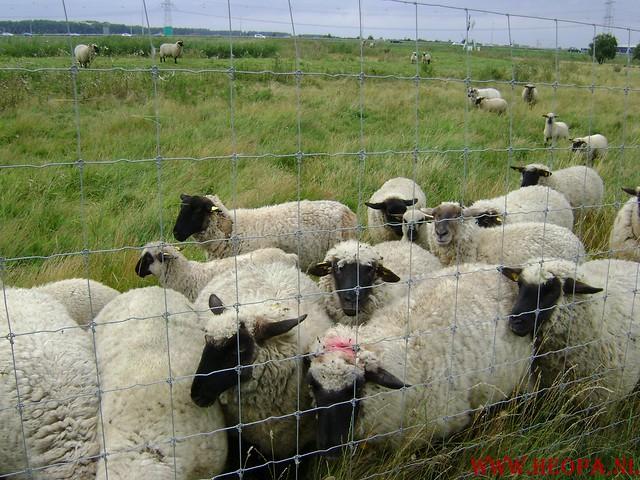 Blokje-Gooimeer 43.5 Km 03-08-2008 (61)