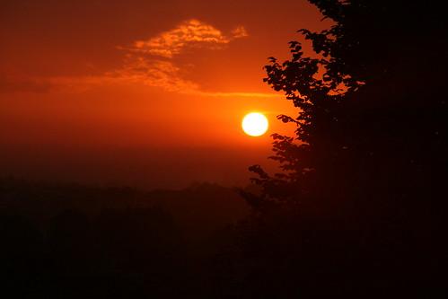 morning sun sunrise canon photography photo flickr day mark walk sigma somerset amateur beginner yeovil whitmarsh amateurphotography canoneos400ddigital sigmazoomlens canoneosdigital400d sigma18200mmf3563dcos sampsonswood whitmarshphotograpy markwhitmarsh marmarwhit markwhitmarshphotography