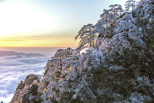 mountain rock tree pine ice sunrise sun clouds sky china huangshan asia centralasia