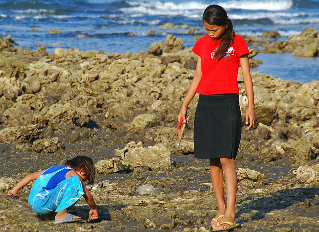 BALI - Looking for edible shells