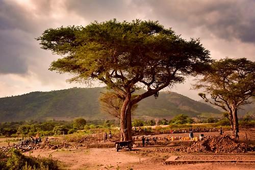 Community Work, Banna Tribe   by Rod Waddington