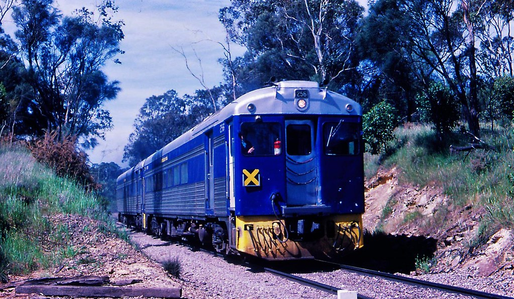 256 and 253   Mt Gambier to Adelaide Blue Birds by Rodney S300