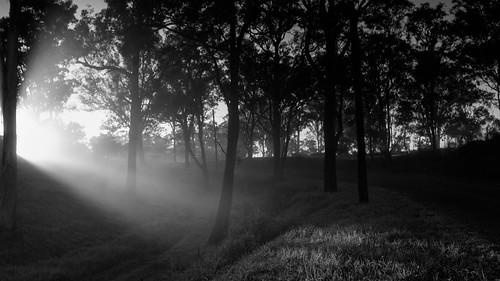 longexposure fog sunrise sydney australia newsouthwales canoneos westernsydney 50d freemansreach cameradetails sigma1750mmf28exdcos