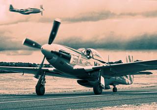 Mustangs | by A D Abbott