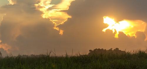 sun sunrise sunny trinidadandtobago tunapunapiarco