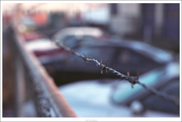 Fence  vs Cars