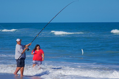 ocean fish beach fishing surf florida whitefish fishingpole indialantic