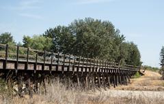 Terra Bella Southern Pacific RR bridge (0382)