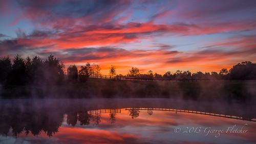 trees reflection colors sunrise virginia pond unitedstates leesburg