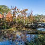 Bridge at Avalon