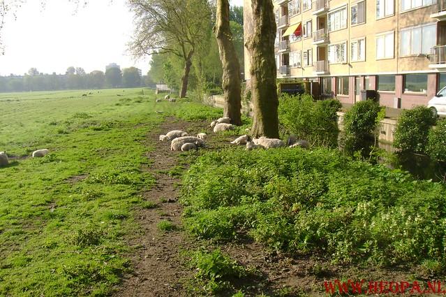 Den Haag          03-05-2008   41.35 Km (10)