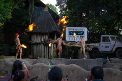 Fire show before Night Safari opens