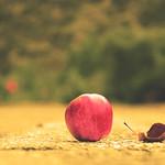 Μήλα Πολιανής