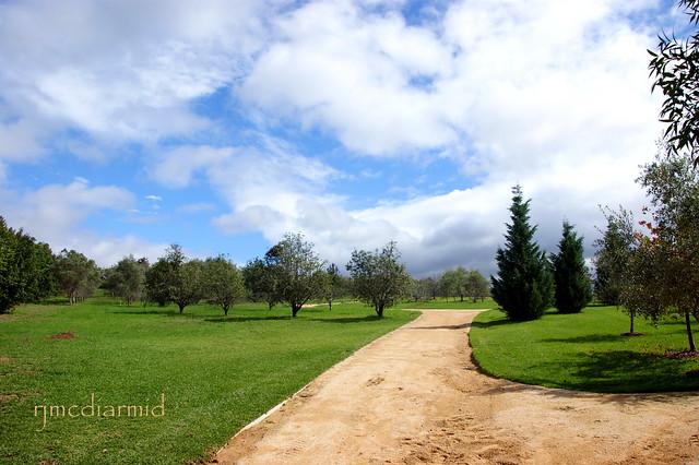 Path at Hunter Valley Gardens