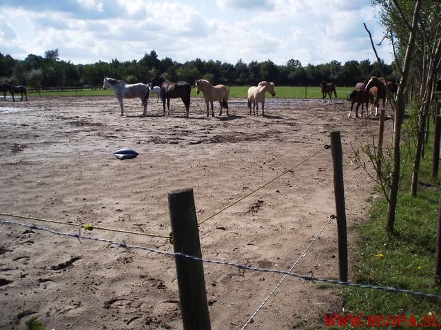 29-08-2009            Amersfoort      40 Km (61)