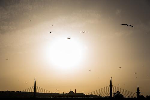 bridge seagulls airplane nikon silhouettes istanbul d750 minarets galata 2016 eminönü 24120mm