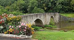 Pont vieux de Solignac (86)