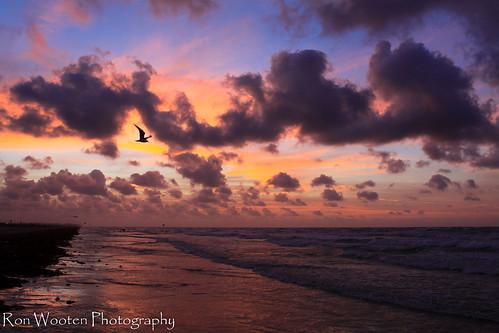 ocean cloud sun beach gulfofmexico clouds sunrise sand gulf coastal oceans sunrises cloudscape cloudscapes gulfcoast cloudformations greatnature coastalscenery gulftnc09 cloudsstormssunsetssunrises gulfconservation oceanstnc gulfofmexicoconservation dailynaturetnc12 ronwooten ronwootenphotography