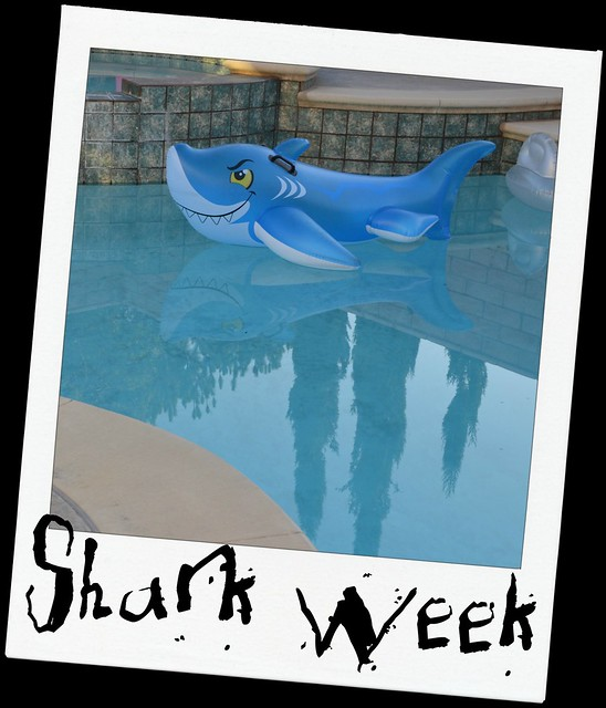 Shark Week Begins