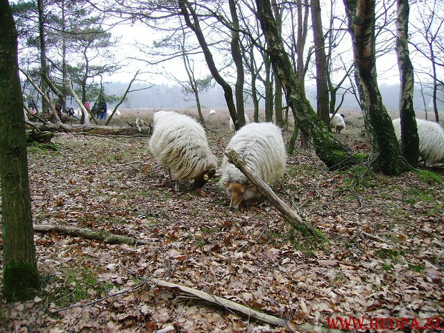 WSV Wandeltocht    Huizen NH.     23-02-2008   20km (20)