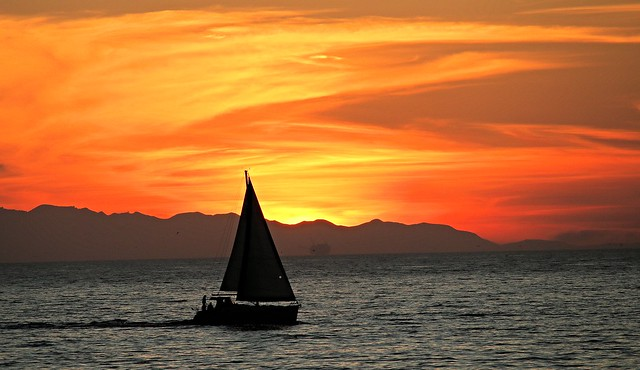 Painted Sunset Sailing