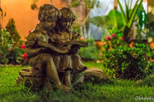 Noche de Lectura en el Jardín