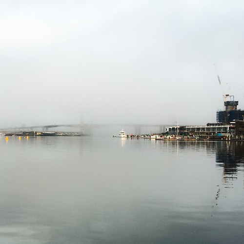 bridge winter mist weather fog river overcast australia melbourne victoria yarra docklands bolte