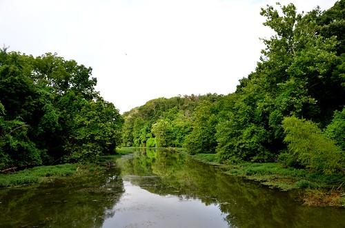 reflection water landscape outdoors scenic missouri ozarks lakespringfield springfieldconservationnaturecenter