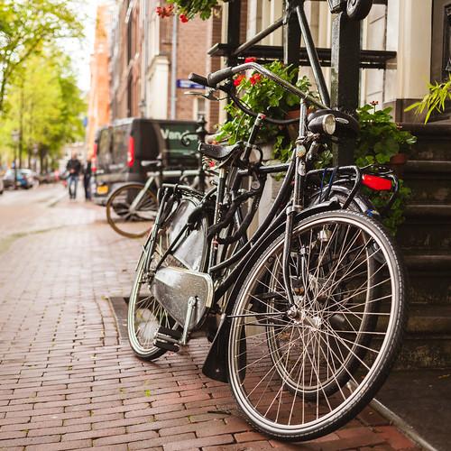 "Fiets (Dutch: ""Bicycle"")   by lennox_mcdough"