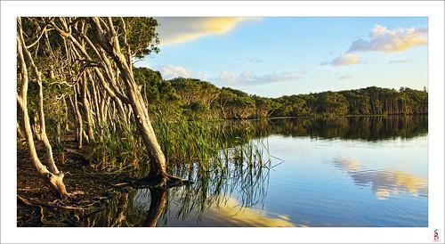 lake water sunrise dawn nikon lennoxhead d90 lakeainsworth stephenbird
