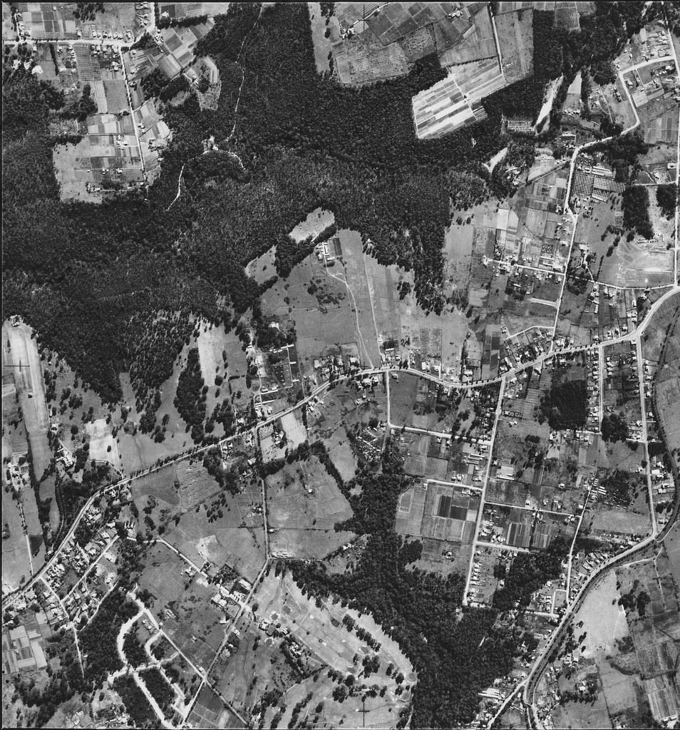 Carlingford, Oatlands, Telopea and Dundas Valley 1951 - Sydney aerial photo