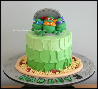 Excellent Ninja Turtle Cake Amanda Requested A Ninja Turtle Cake For Flickr Funny Birthday Cards Online Overcheapnameinfo