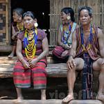 03 Viajefilos en Laos, Bolaven Plateau 133