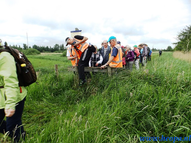 2016-05-25        s'Graveland       25 Km (78)