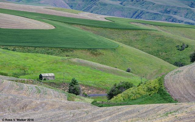 Farm on the Canyon's Edge