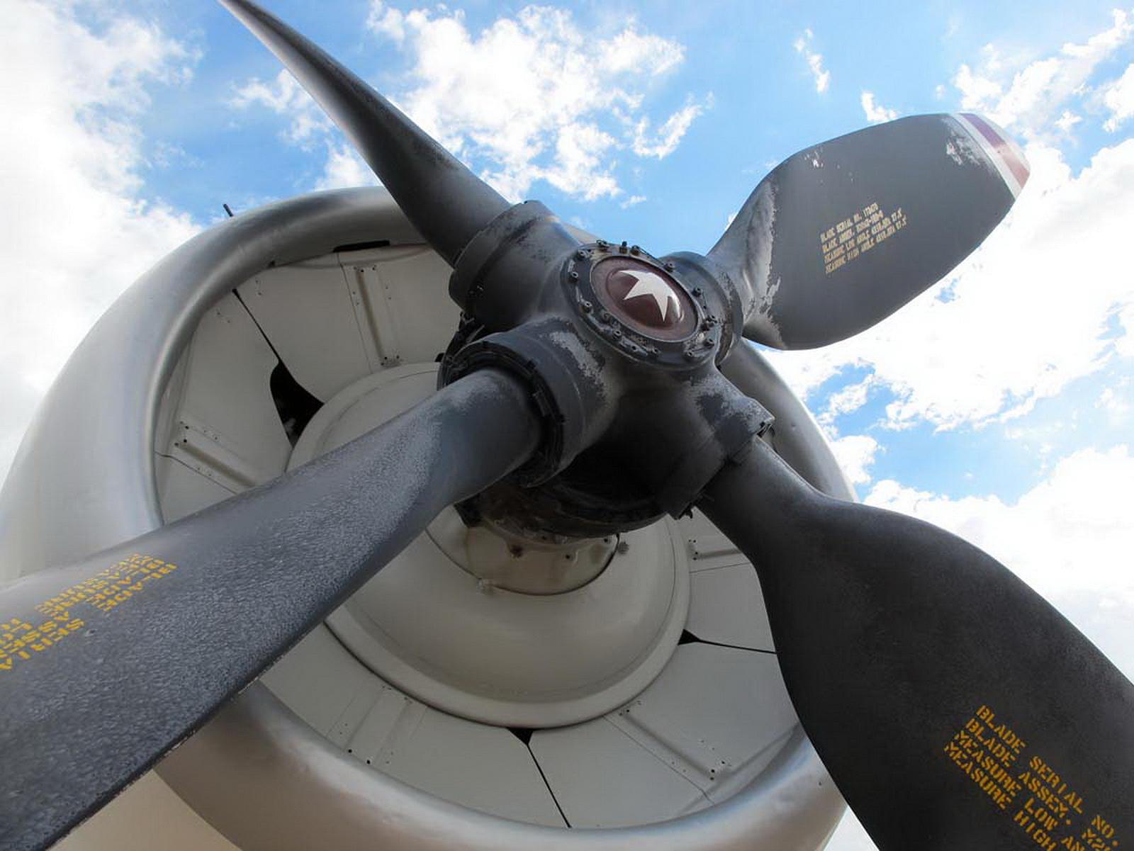 Douglas EA-1F Skyraider (2)