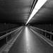 Metro Lines by Torsten Reimer