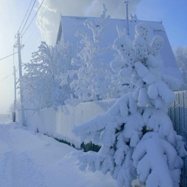 Картинки по запросу декабрь мороз фото