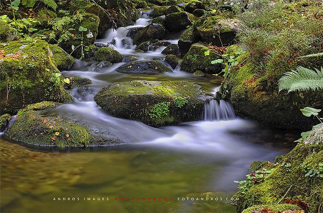 El río Dobra cerca de su nacimiento.Parque Nacional de Picos de Europa // The Dobra River near its source. National Park Picos de Europa