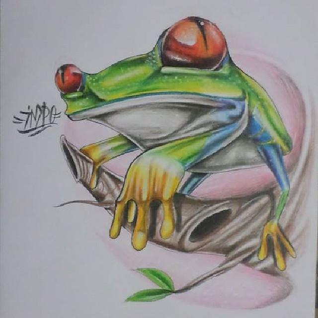Rana Dabdole Al Lapiz De Color Natural Dibujo Flickr