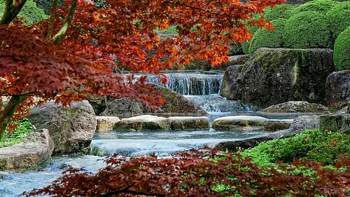 bayern deutschland stadt augsburg japanischergarten botanischergarten bayernbavaria