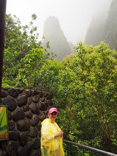 Maui- IAO Valley -Joe 2 | by KathyCat102