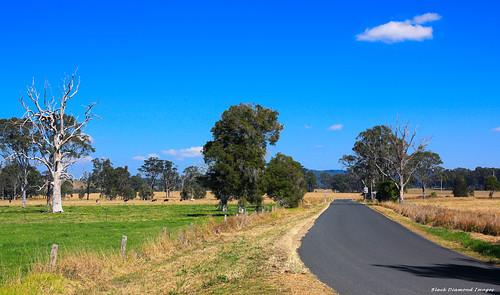 australia greatlakes nsw midnorthcoast ruralview nabiac dyerscrossing wallanbahrd